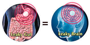 Leaky Gut, Leaky Brain
