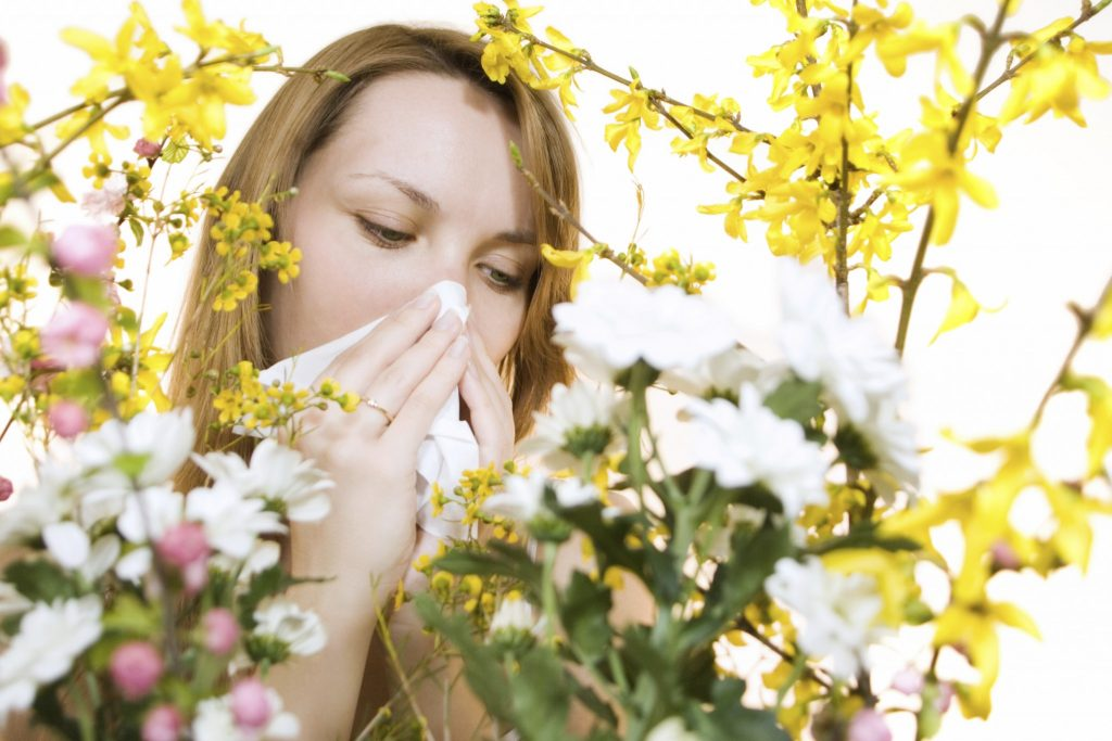 Cover- Allergies