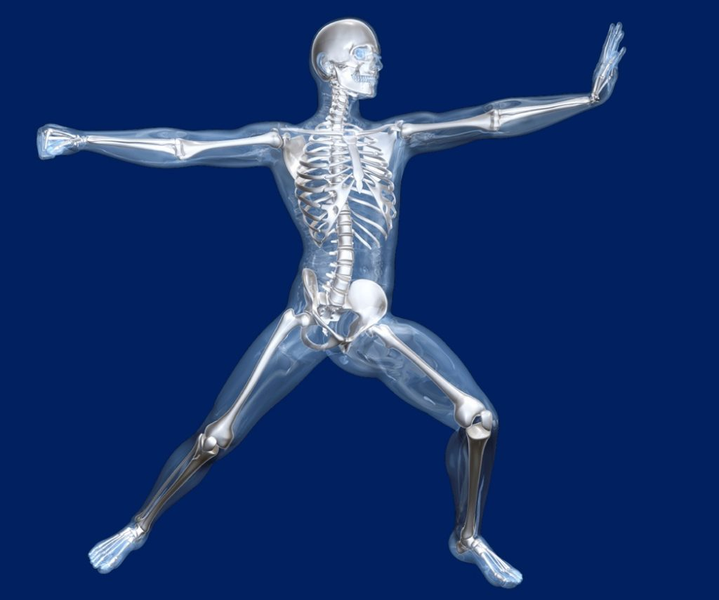 movement, body, human