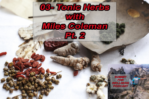 Tonic Herbs with Miles Coleman pt 2