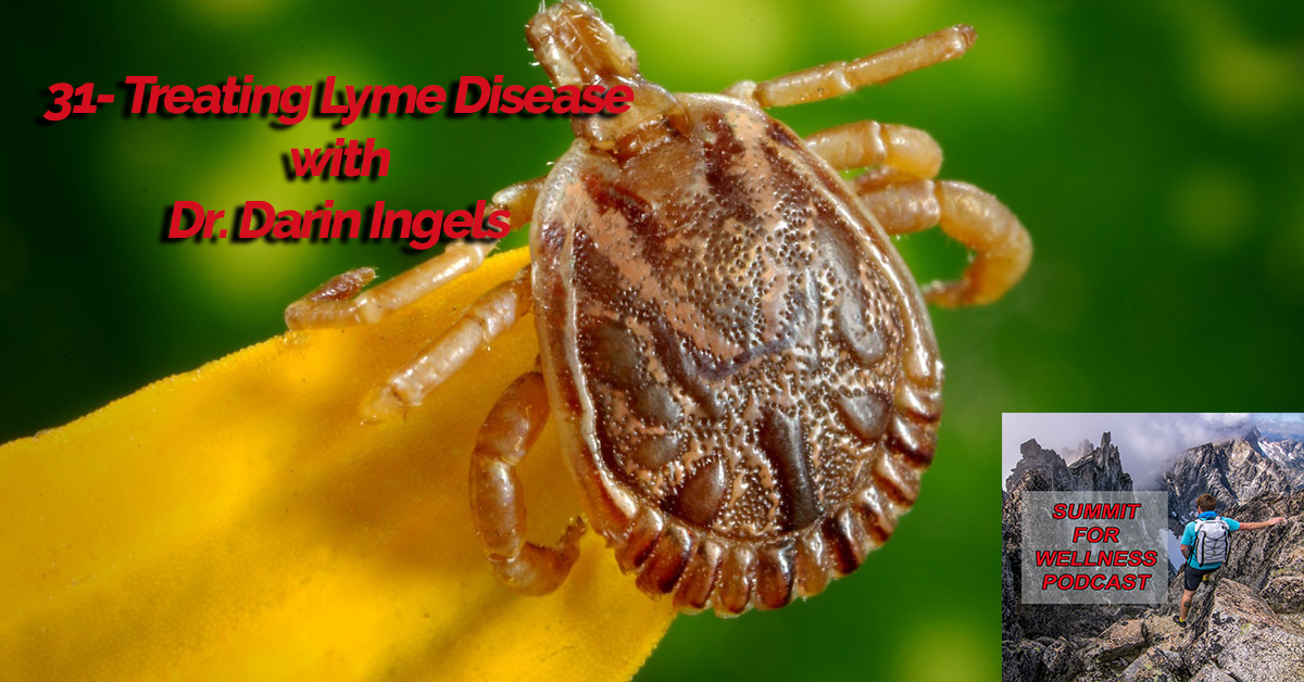 31- Treating Lyme Disease with Darin Ingels - Summit For Wellness