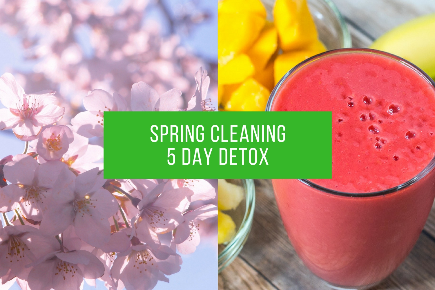 Spring Cleaning 5 Day Detox