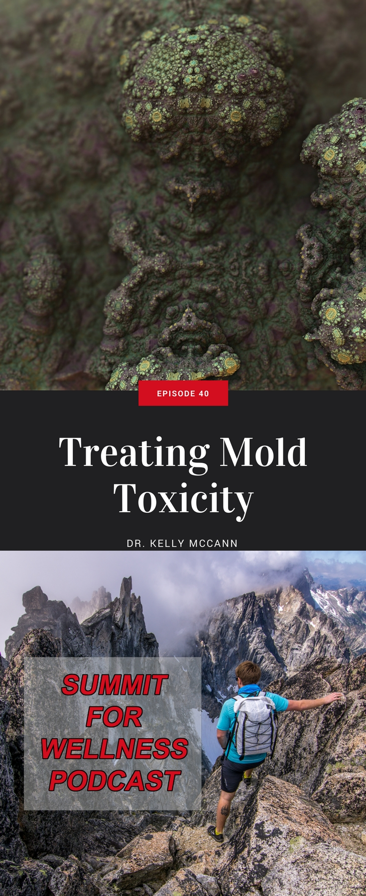 Dr. Kelly McCann discusses ways to treat toxic mold exposure and how to remove black mold from your house.