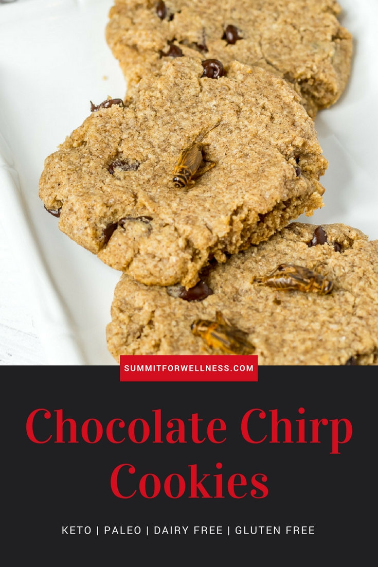 Enjoy these tasty Keto Chocolate Chirp Cookies that are made from real cricket powder