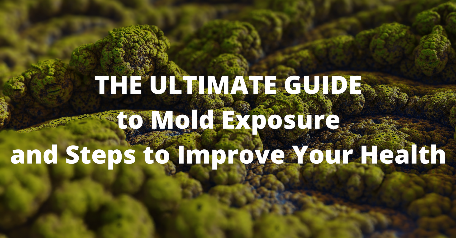The Ultimate Guide to Mold Exposure and Steps to Improve Your Health