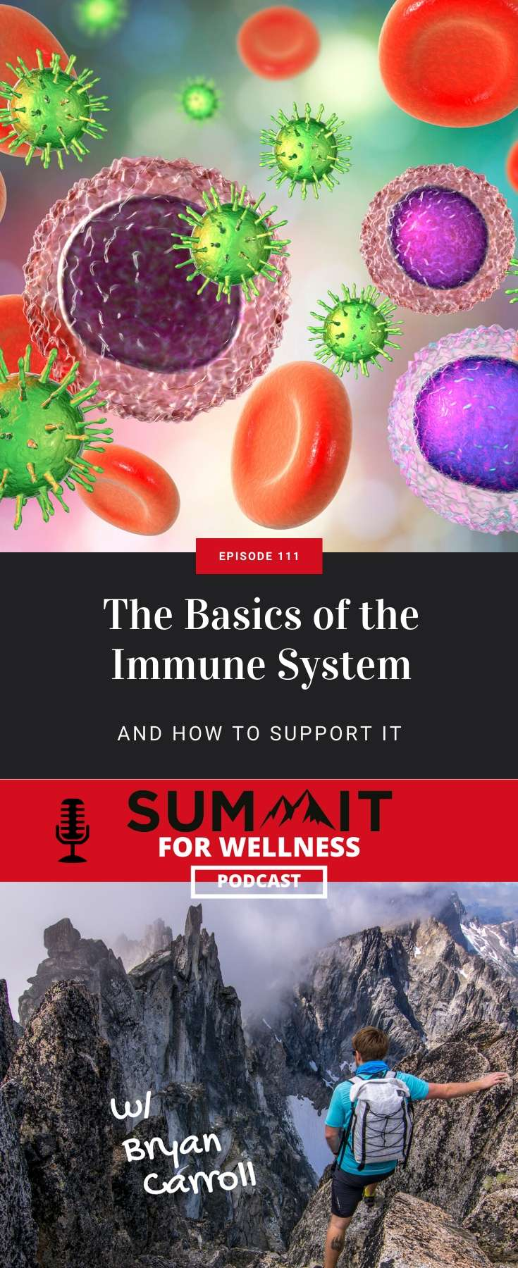 Learn the basics of the immune system and how it protects you