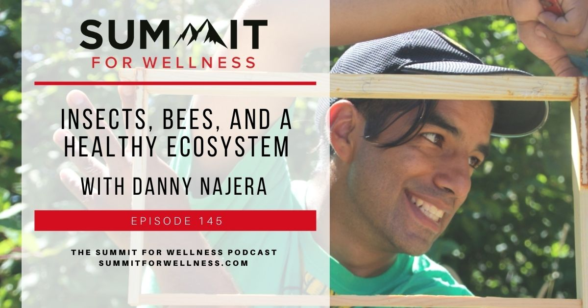 Danny Najera teaches us how bees and insects influence our ecosytems