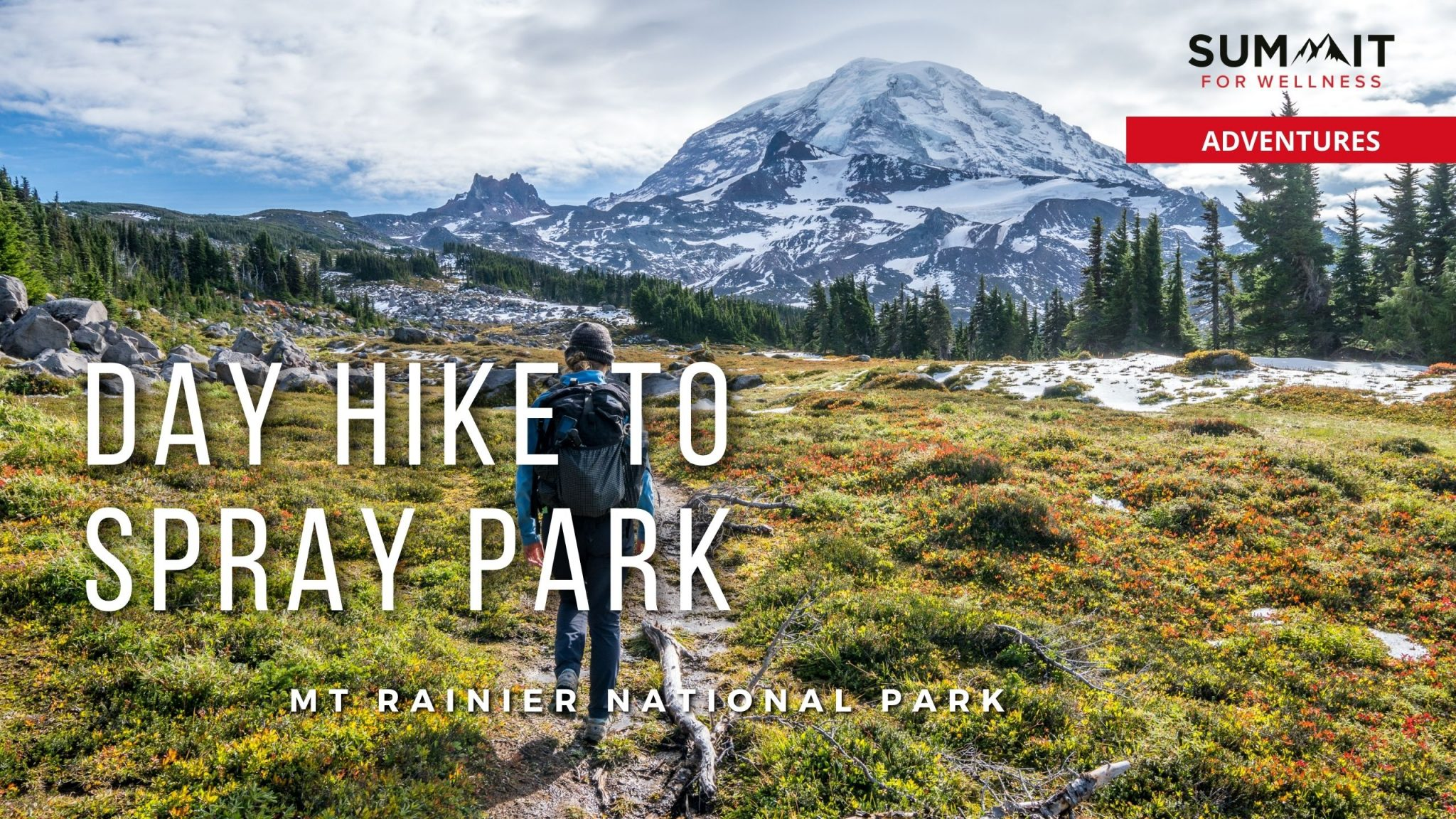 Hike to Spray Park to see beautiful views of Mt Rainier