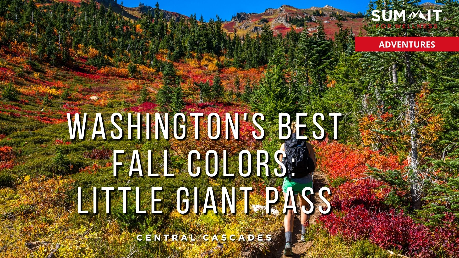 Day hike to Little Giant Pass to see the fall colors